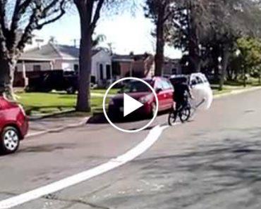 Se Os Invólucros De Bolhas o Acalmam, Então Esta é a Sua Bicicleta Perfeita! 3