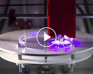 Impressora 3D Recria Tecidos Humanos e Poderá Terminar Com Testes Em Animais 5