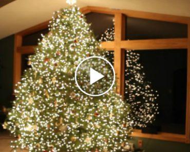 Parece Uma Árvore De Natal Normal, Mas Quando a Música Toca Tudo Muda 2