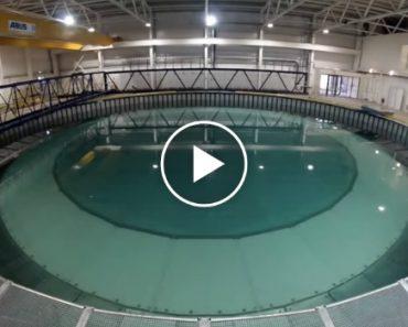 Maior Piscina Do Mundo Que Consegue Simular Os Vários Tipos De Ondulação Das Marés 3