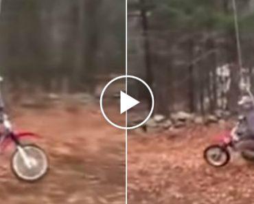 Homem Inventa Baloiço Perfeito Para Motociclistas 3