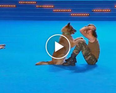 Cão e Dona Fazem Emocionante Atuação Em Concurso Canino 8