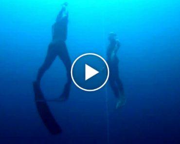 Recorde Mundial De Profundidade Em Mergulho Livre Não Assistido 9