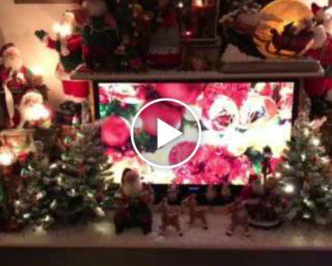Holandês Dedicado Precisou De Um Mês Inteiro Para Decorar a Sua Sala Com Enfeites De Natal 8