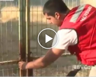 Prestável Voluntário Proporciona Momento Cómico Ao Tentar Ajudar Bombeiros Durante Incêndio 1