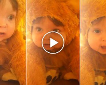 Bebé Fantasiada De Leão Encanta Redes Sociais Com o Seu Adorável Rugido 5