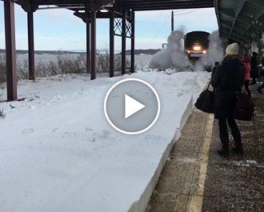 """Passageiros São Surpreendidos Por """"Tsunami"""" De Neve Enquanto Esperavam Por Transporte 5"""