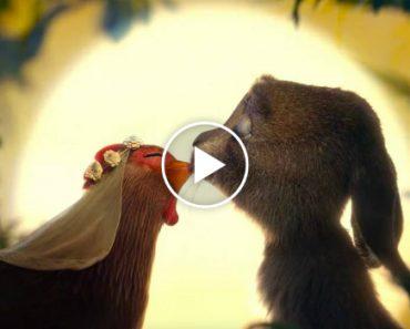 O Vídeo Viral Que Conta a Origem Romântica Do Coelhinho Da Páscoa 8