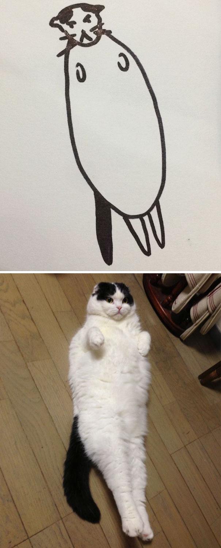Desenhos De Gatos Que Não Acreditaria Que Existiam Se Não Houvessem Fotos 13