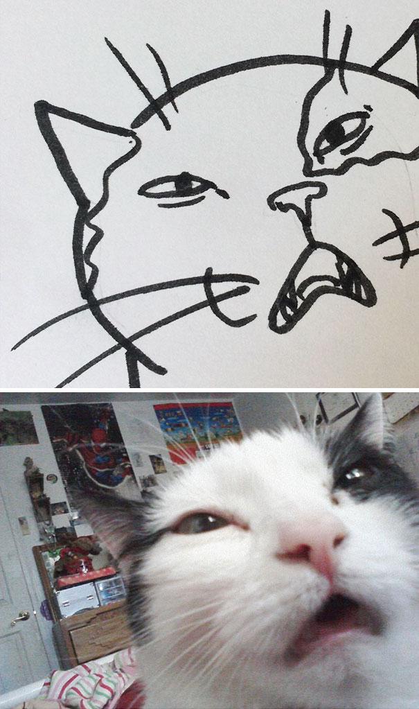Desenhos De Gatos Que Não Acreditaria Que Existiam Se Não Houvessem Fotos 16