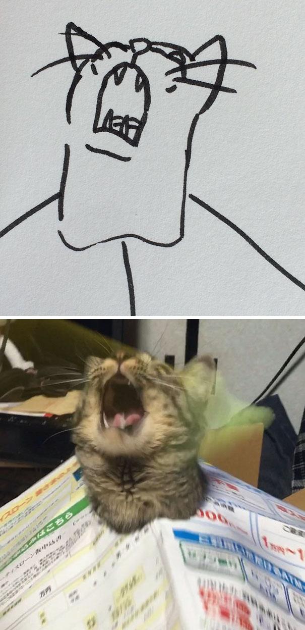 Desenhos De Gatos Que Não Acreditaria Que Existiam Se Não Houvessem Fotos 19