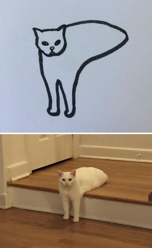 Desenhos De Gatos Que Não Acreditaria Que Existiam Se Não Houvessem Fotos 4