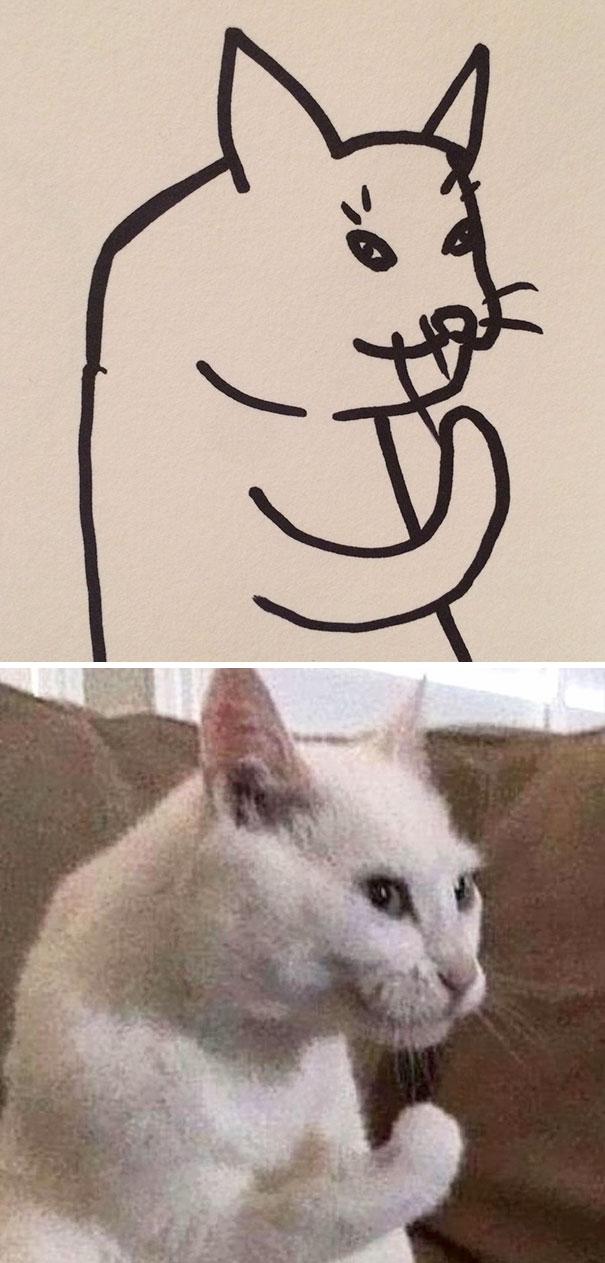 Desenhos De Gatos Que Não Acreditaria Que Existiam Se Não Houvessem Fotos 8