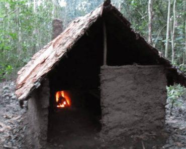 Como Construir Uma Cabana Na Floresta Usando Apenas Elementos Da Natureza 2