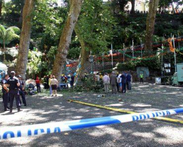 Tragédia Na Madeira: Vídeo Amador Capta Momento Da Queda De Árvore Sobre Multidão 2