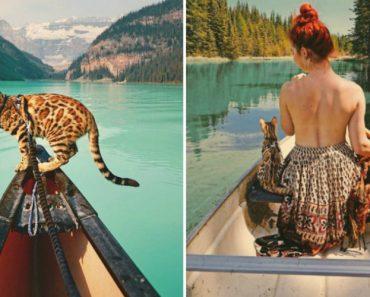 Conheça Suki... a Gatinha Que Adora Viajar Pela Montanha! 3