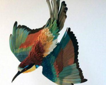 Incríveis Esculturas De Pássaros Totalmente Feitas Em Papel 7