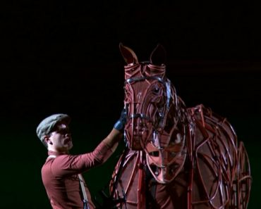 Esta Marioneta é Tão Perfeita Que Consegue Imitar Cada Movimento De Um Cavalo Real 8
