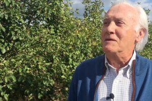 António Campos Explica Porque As Suas 40.000 Macieiras Não Arderam 10