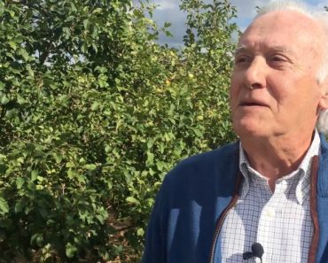 António Campos Explica Porque As Suas 40.000 Macieiras Não Arderam 2