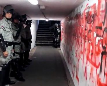 Túnel De Visitantes Em Estádio Sérvio é Uma Das Coisas Mais Assustadoras Do Futebol 1