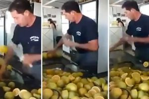 Homem Tem Técnica Impressionante Para Cortar Limões 9