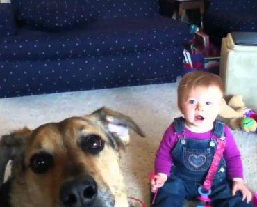 O Sorriso Deste Bebé Ao Ver o Cão Brincar Com Bolas Sabão é Contagiante 1