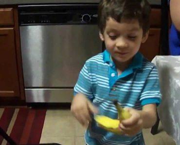 Quando Uma Banana Parece Ser o Melhor Presente Do Mundo 9