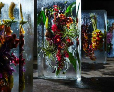 Talentoso Artista Esculpe Flor Colorida No Interior De Um Bloco De Gelo 8