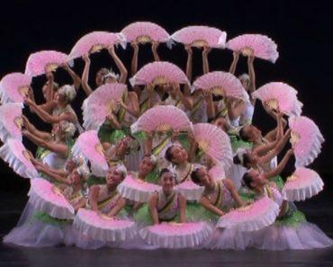 Numa Só Atuação Bailarinas Combinam Bailado Com Música Oriental E Leques De Forma Perfeita 2