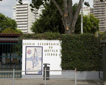 Praga De Ratos Fecha Escolas Em Lisboa 14