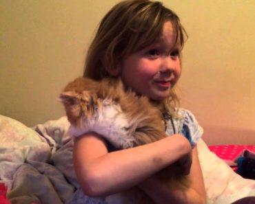 A Alegria De Uma Criança Ao Receber Um Gatinho No Seu Aniversário 7