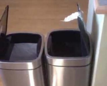 Homem Não Consegue Conter o Riso Enquanto Olha Para Dois Caixotes Do Lixo! 3