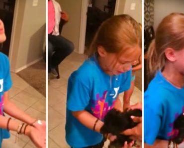 Menina Tem Reação Adorável Ao Receber Um Cachorrinho De Presente 9