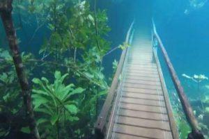 Vídeo Incrível Mostra Trilho Submerso Em Água Cristalina Após Chuva Intensa 10