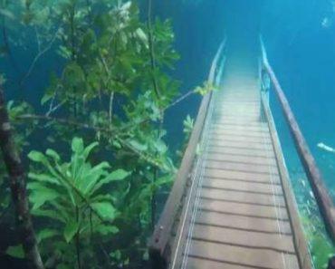 Vídeo Incrível Mostra Trilho Submerso Em Água Cristalina Após Chuva Intensa 5