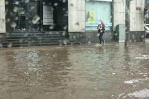 Gatinho é Salvo Depois De Condutor o Retirar De Rua Inundada 9