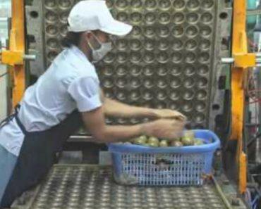 Vídeo Interessante Mostra Como é Todo o Processo De Fabricação Das Bolas De Ténis 3