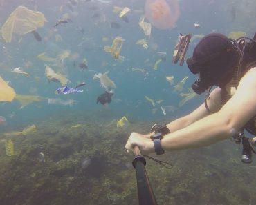 """Imagens Impressionantes Mostram Mergulhador a Nadar Num Verdadeiro """"Oceano De Plástico"""" 1"""