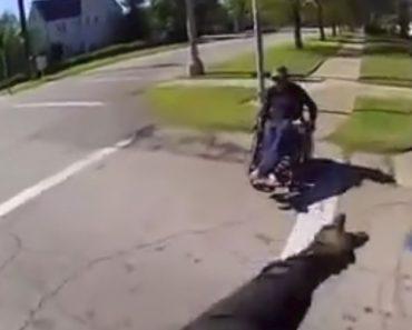 Motociclista Com Atitude De Louvar Ajuda Homem Em Cadeira De Rodas a Atravessar a Estrada 7