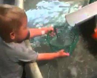 Inocente Criança Não Entende Porque Não Consegue Encher o Cesto Com Água 3