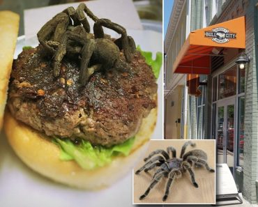 "Neste Restaurante, Os Clientes Podem Saborear Um ""Delicioso"" Hambúrguer Tarântula 1"