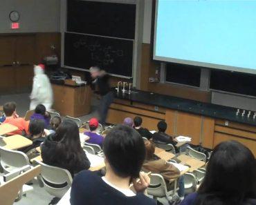 Aluno Veste-se De Galinha Para Irritar Professor 6