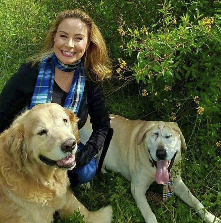Cão Abandonado Por Ter Deformação Facial Ganha Nova Oportunidade Para Ser Feliz Num Novo Lar 16