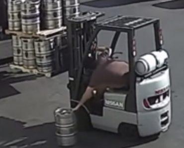 Trabalhador Com Excelentes Reflexos Consegue Apanhar Barril De Cerveja Que Cai Do Empilhador 4