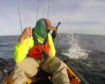 Pescador Assusta-se Depois De Ser Surpreendido Com Foca Brincalhona 3