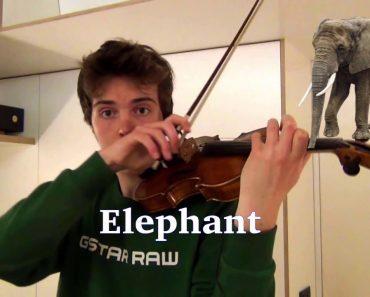 Jovem Reproduz o Som De Diferentes Animais Usando Um Violino 5