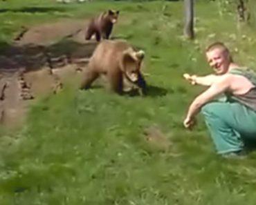Corajosos Homens Alimentam Ursos Selvagens Com As Próprias Mãos 9