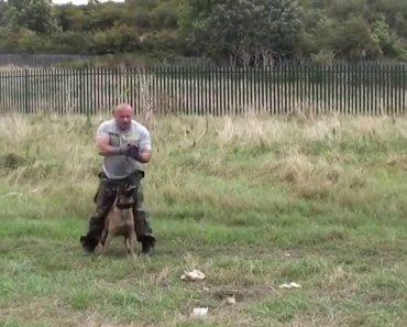 Polícia e Cão Mostram Sintonia Perfeita Durante Treino 4