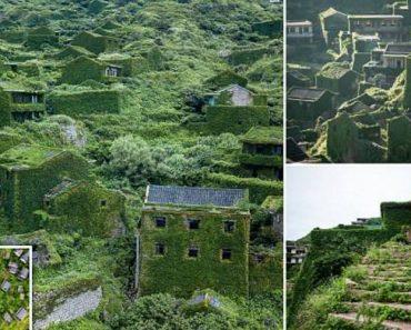 Imagens Incríveis Mostram Como a Natureza Se Apoderou De Aldeia Abandonada 2